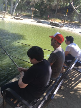 Agoura, Καλιφόρνια: fishing with bamboo poles at one of the ponds