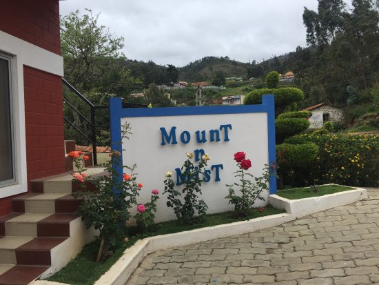 Mount 'n' Mist: photo0.jpg