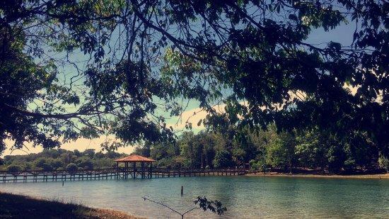 Parque Florestal de Sinop