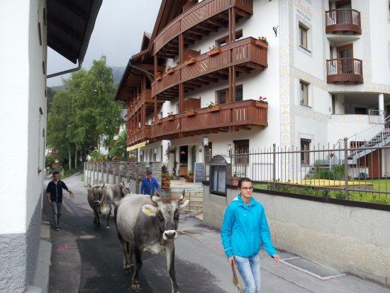Haus Claudia Bewertungen & Fotos Serfaus Österreich