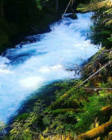 Sisters, OR: The path following the river and leading to the falls is beautiful, but nothing compares to hiki