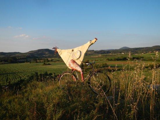 Saint-Ferriol, Francia: En route pour le Poulet bicyclette !