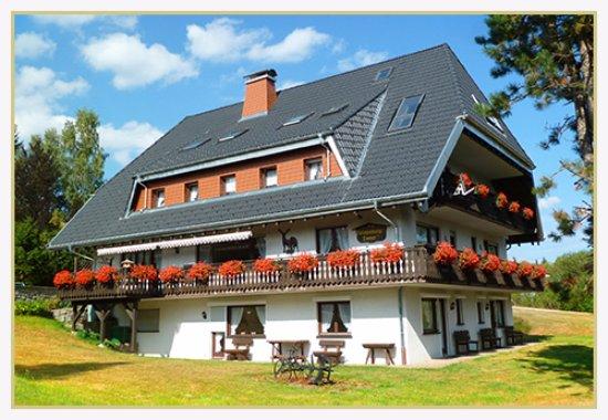 pension rehwinkel hotel reviews schluchsee germany tripadvisor. Black Bedroom Furniture Sets. Home Design Ideas
