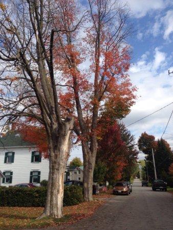 Merrickville, Kanada: photo6.jpg