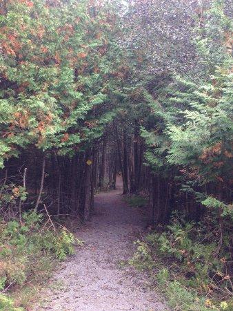 Merrickville, Kanada: photo7.jpg
