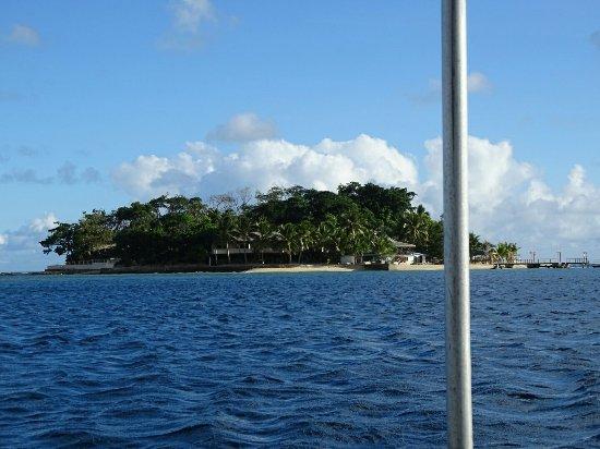 Hideaway Island Resort: DSC00713_large.jpg