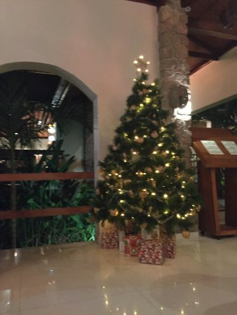 Anse Bois de Rose, Seszele: в настроении нового года, когда вокруг только пальмы