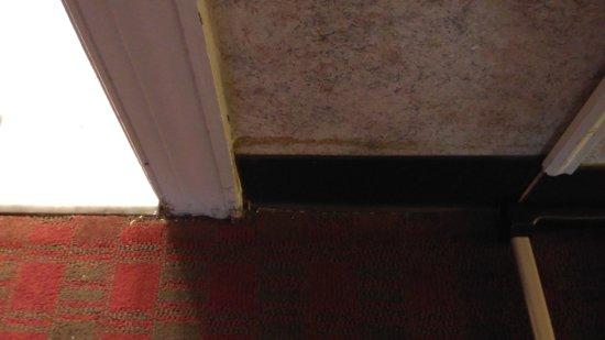 Rodeway Inn Picture