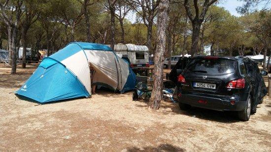 Camping Donana Playa Picture Of Camping Donana Playa Mazagon Tripadvisor