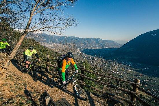 Hotel Finkenhof: Our bike Academy