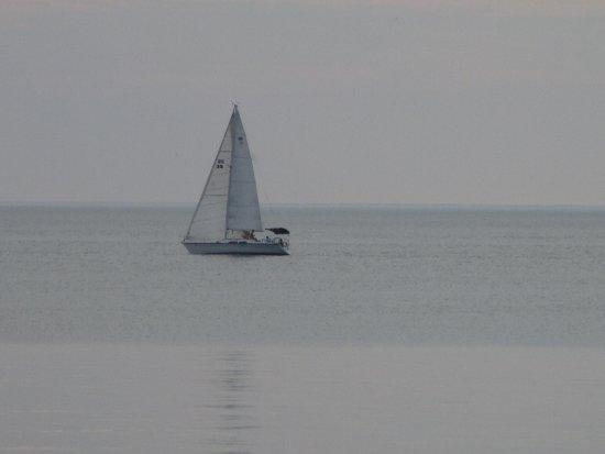 Pultneyville, Nova York: B. Forman Park - sailboat