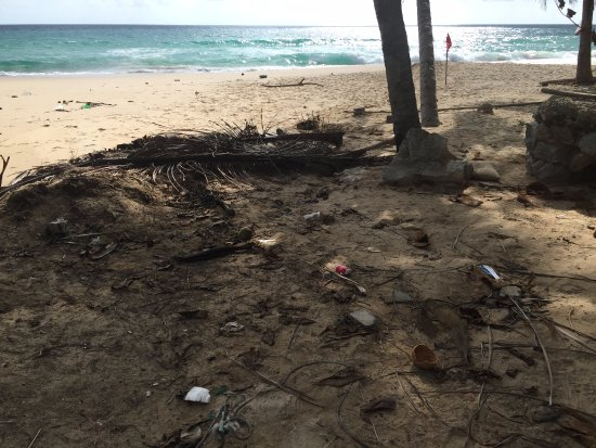 Twinpalms Phuket: Dirty uncleaned beach