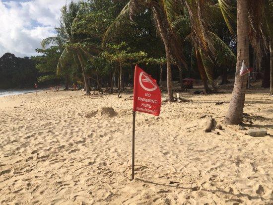 Twinpalms Phuket: Dirty uncleaned beach - unsafe to swim