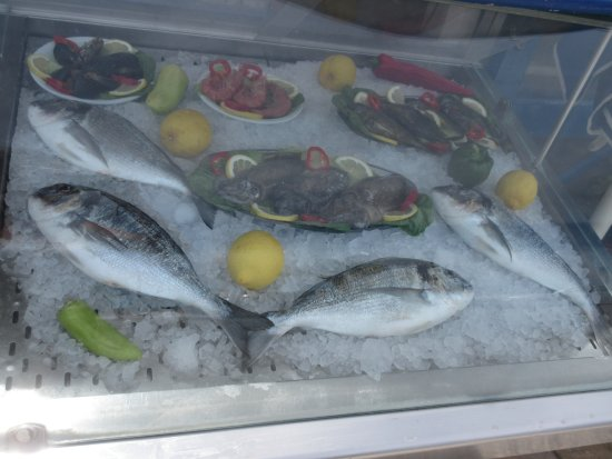 'Brasosca' Fish Taverna and Restaurant : Display of what's on offer.