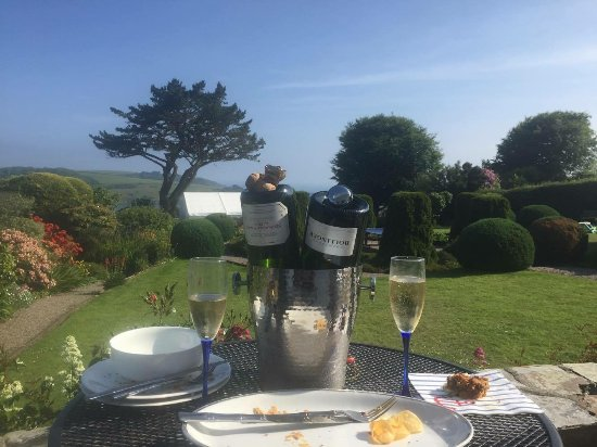 St Mawes, UK: Canapés on the patio