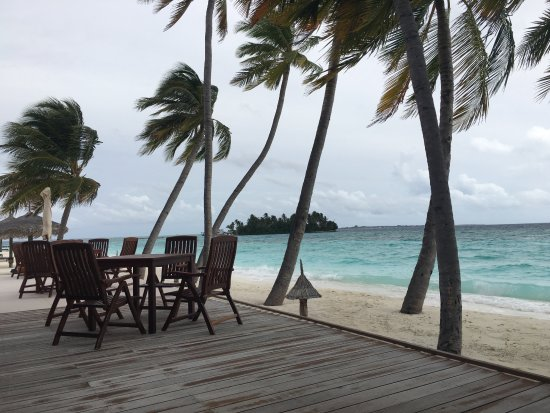 Veligandu Island Resort & Spa : View from Bar