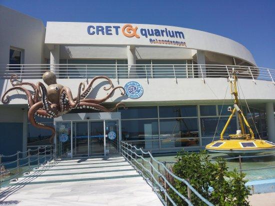 Lacquario di Creta - Picture of Cretaquarium ...
