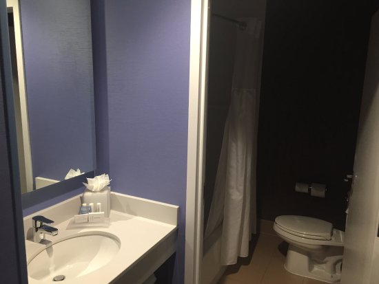 Fairfield Inn & Suites Chicago Downtown/Magnificent Mile: Very small but clean and tidy bathroom