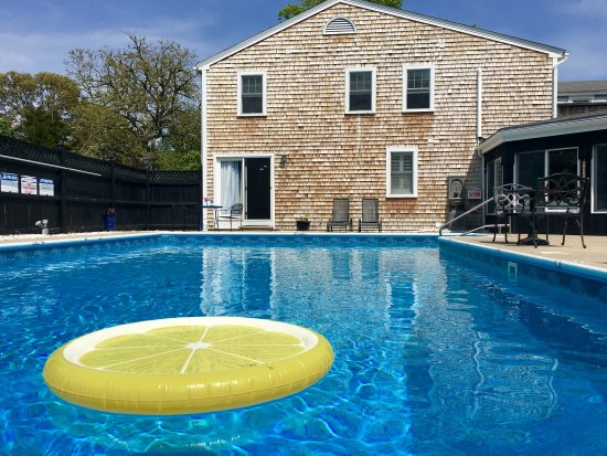 The Platinum Pebble Boutique Inn: Swim in the refreshing waters of the Platinum Pebble pool.