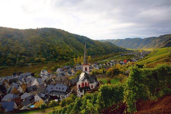 Ediger-Eller, Tyskland: Blick auf den Springiersbacher Hof aus den Weinbergen
