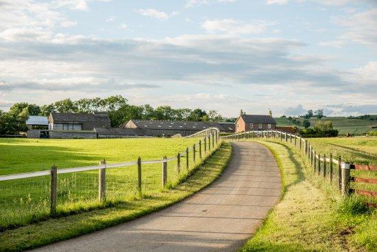 Thornton Lodge Farm B&B : Approach to House & Stables
