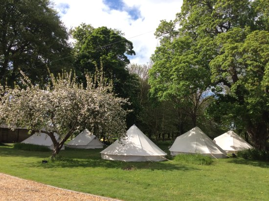Thompson, UK: Camping at College Farm