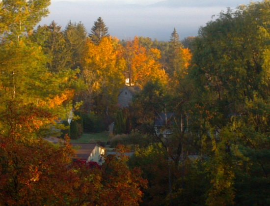 Journey's End Lodge: Fall Foliage- (from our porch)