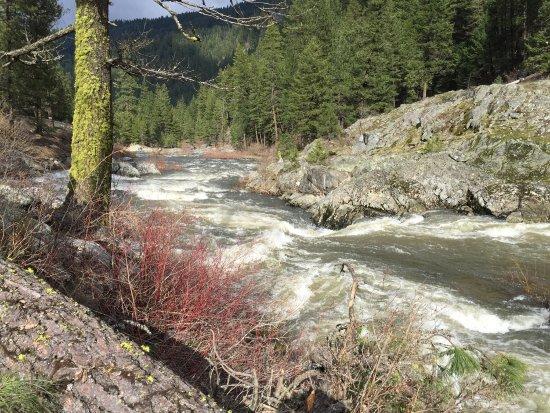 Salmon River Motel: photo6.jpg