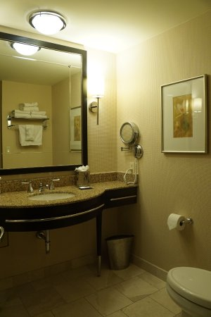 Hilton Americas - Houston: Bathroom