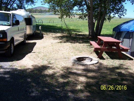 I Had Parked Behind The Picnic Table Next To My Trailer No Grass Or - Picnic table trailer