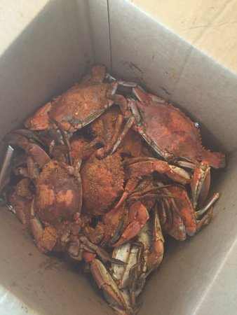 Gary Howard Seafood: Crabs from Gary Howard's.