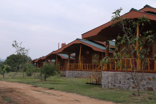 Yala Peace Cottages