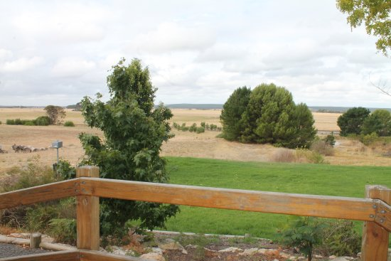 Hillview Caravan Park : Views from your cabin