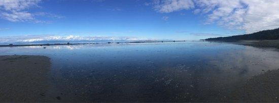 Bates Beach Oceanfront Resort : photo1.jpg