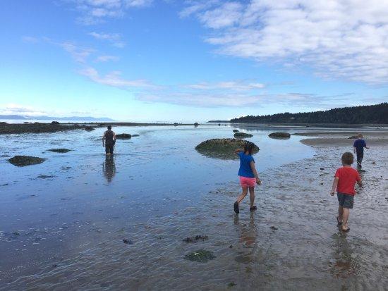 Bates Beach Oceanfront Resort: photo2.jpg