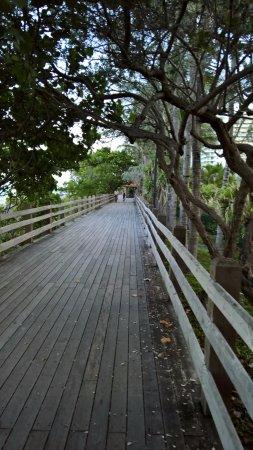 Eden Roc Miami Beach Resort Boardwalk Near The Hotel