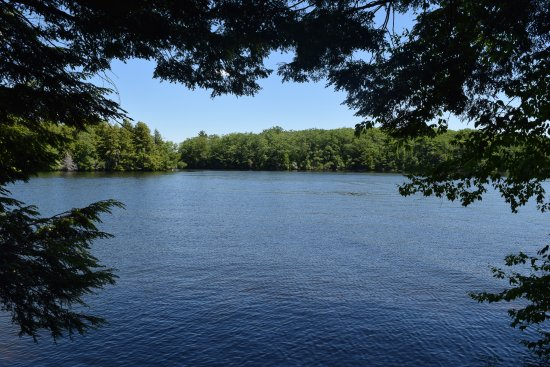 East Otis, MA: Otis Reservoir from a trail in the tolland state forest