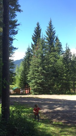 Mountain Meadow RV Park & Cabins: photo0.jpg