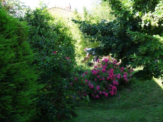Saint-Desirat, Γαλλία: jardin entretenu par le patron