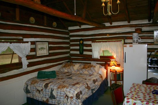 Ellis Lake Resort: Doghouse Log Cabin