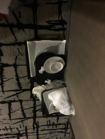 Embassy Suites by Hilton Detroit Southfield: The stinky trash left out all night and day