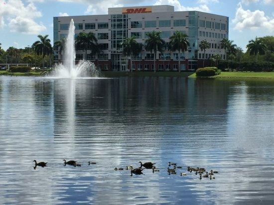 Renaissance Fort Lauderdale-Plantation Hotel Photo