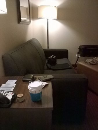 Hampton Inn Chicago Naperville: The king room has a comfortable couch and a leg rest.