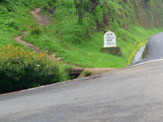 Gisakura, Руанда: located right next to main road