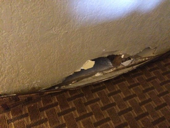 Mid Towne Inn and Suites: Wall by the bed