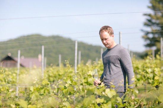 Madison, VA: Winemaker Ben Jordan crafts award-winning wines that speak to our particular place in Virginia.
