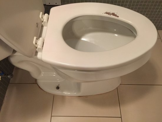 Paint bare toilet seat, nut missing in commode bolt anchor - Picture ...