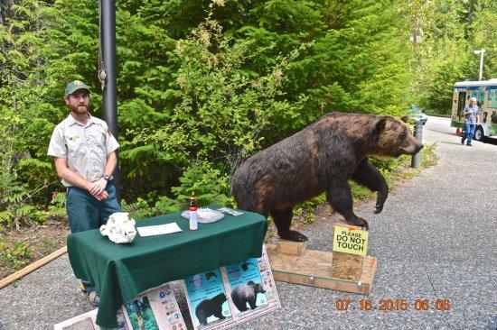 Marblemount, WA: Outside Visitors center North Cascades NP