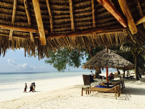 Dream of Zanzibar: Lovely sun chairs and umbrellas - The perfect spot for relaxation