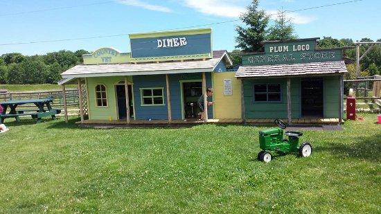 Egg Harbor, WI: play buildings, gas pump, tractor
